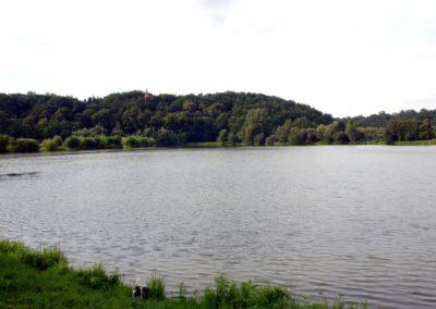 Neisseaue - lea